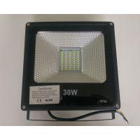 GT-LED-FL-003-30W-PW